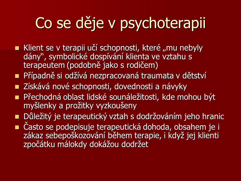 """Co se děje v psychoterapii Klient se v terapii učí schopnosti, které """"mu nebyly dány"""", symbolické dospívání klienta ve vztahu s terapeutem (podobně ja"""