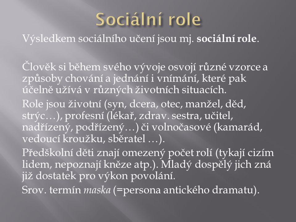 Výsledkem sociálního učení jsou mj. sociální role.