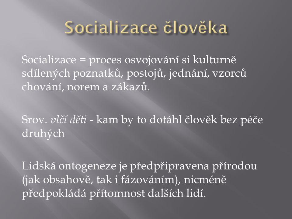 Socializace = proces osvojování si kulturně sdílených poznatků, postojů, jednání, vzorců chování, norem a zákazů.