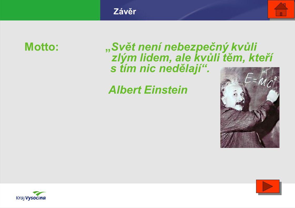 """Motto: """"Svět není nebezpečný kvůli zlým lidem, ale kvůli těm, kteří s tím nic nedělají"""". Albert Einstein Závěr"""