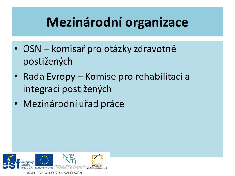 Mezinárodní organizace OSN – komisař pro otázky zdravotně postižených Rada Evropy – Komise pro rehabilitaci a integraci postižených Mezinárodní úřad p