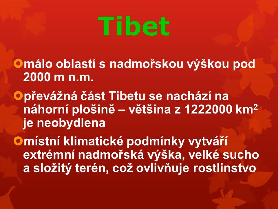 Tibet  málo oblastí s nadmořskou výškou pod 2000 m n.m.