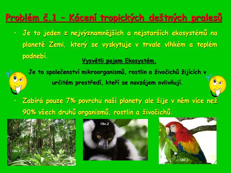 Důsledky kyselého deště Ničení lesních ekosystému.Ničení lesních ekosystému.