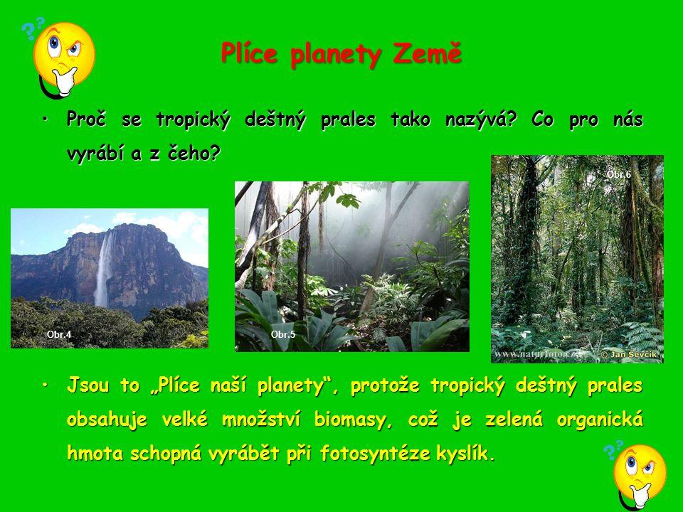 Plíce planety Země Proč se tropický deštný prales tako nazývá? Co pro nás vyrábí a z čeho?Proč se tropický deštný prales tako nazývá? Co pro nás vyráb