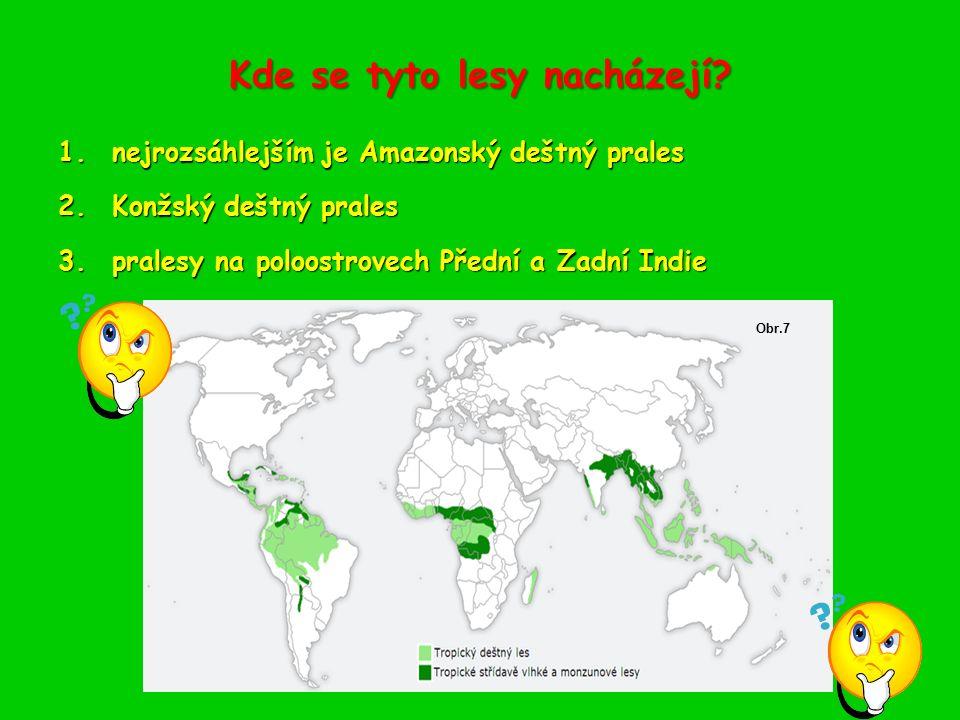 Kde se tyto lesy nacházejí? 1.nejrozsáhlejším je Amazonský deštný prales 2.Konžský deštný prales 3.pralesy na poloostrovech Přední a Zadní Indie Obr.7