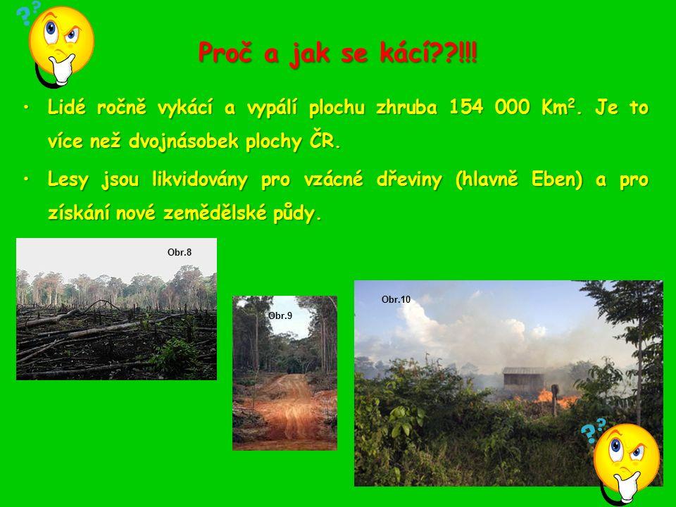 Důsledky kácení tropických deštných pralesů 1.Snižuje se počet rostlin vyrábějících kyslík.