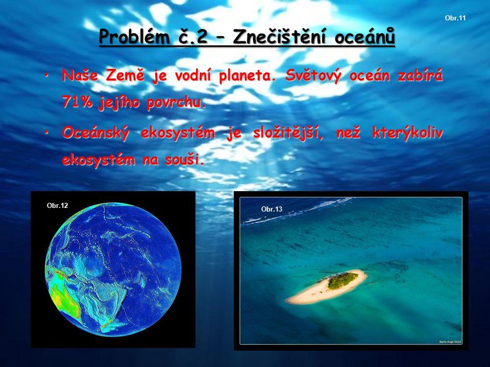 Problém č.2 – Znečištění oceánů Naše Země je vodní planeta. Světový oceán zabírá 71% jejího povrchu.Naše Země je vodní planeta. Světový oceán zabírá 7