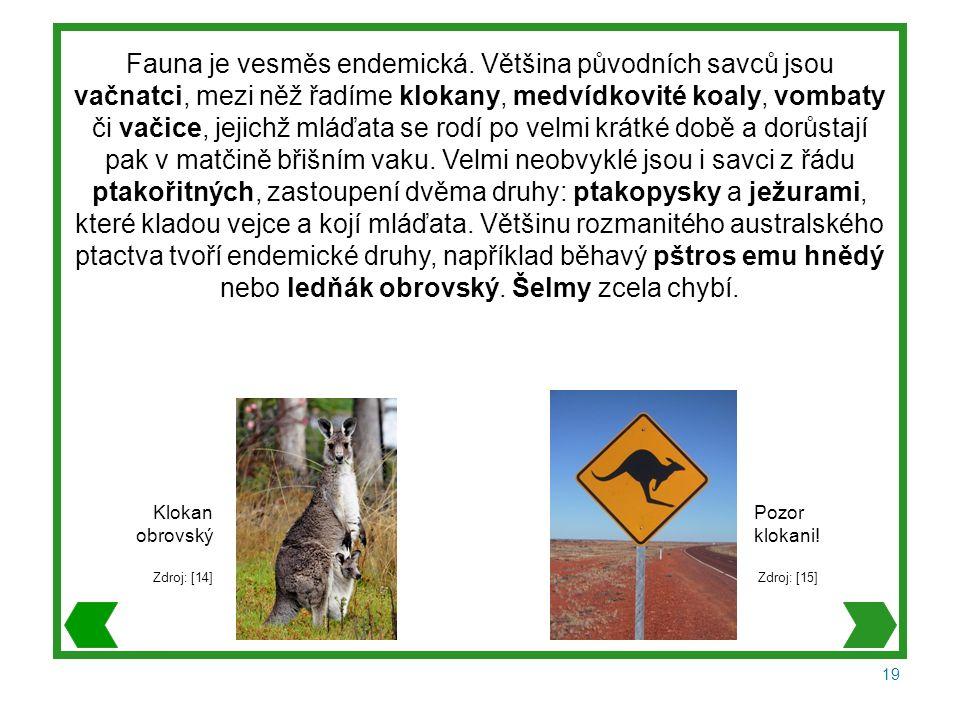 19 Fauna je vesměs endemická.