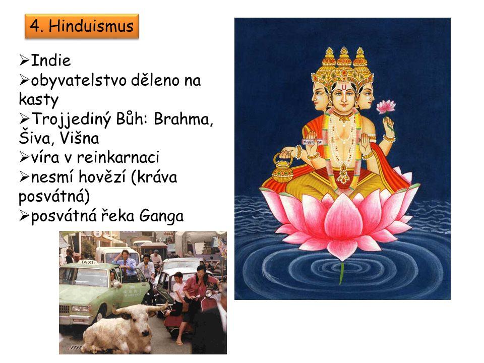 4. Hinduismus  Indie  obyvatelstvo děleno na kasty  Trojjediný Bůh: Brahma, Šiva, Višna  víra v reinkarnaci  nesmí hovězí (kráva posvátná)  posv