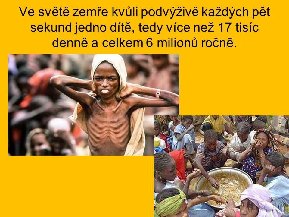 Ve světě zemře kvůli podvýživě každých pět sekund jedno dítě, tedy více než 17 tisíc denně a celkem 6 milionů ročně.