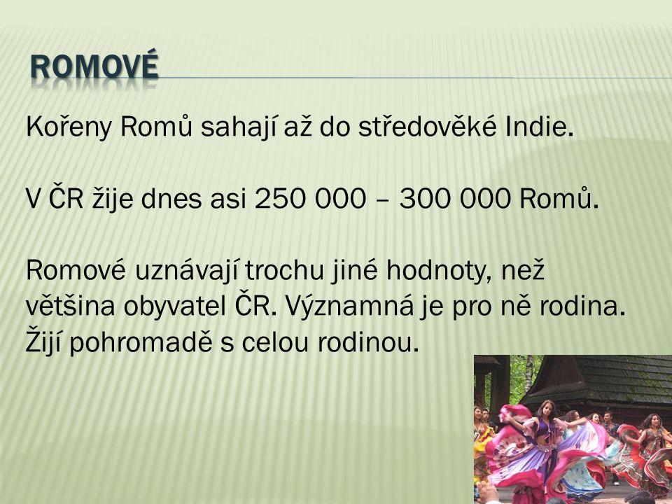 Kořeny Romů sahají až do středověké Indie. V ČR žije dnes asi 250 000 – 300 000 Romů. Romové uznávají trochu jiné hodnoty, než většina obyvatel ČR. Vý