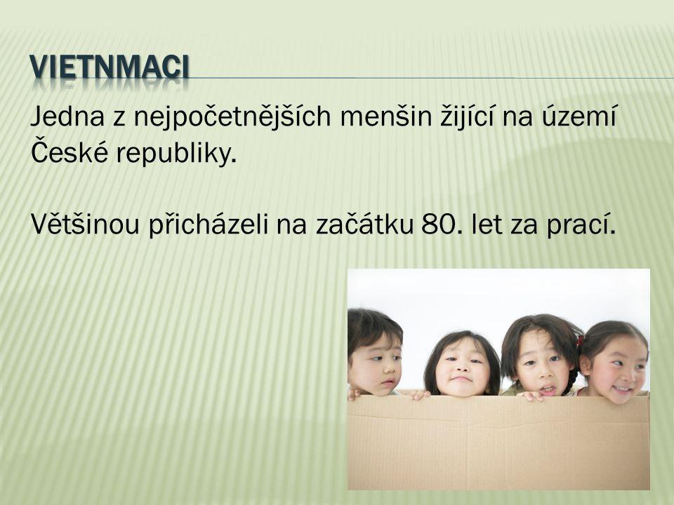 Jedna z nejpočetnějších menšin žijící na území České republiky. Většinou přicházeli na začátku 80. let za prací.