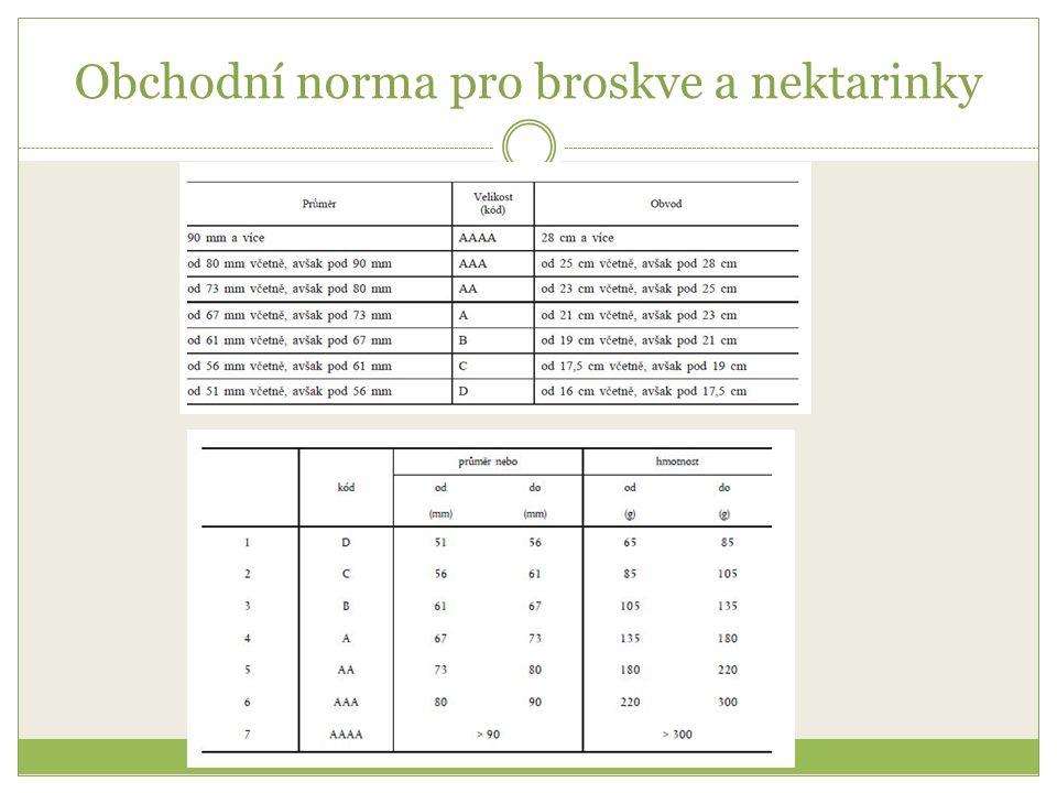 Obchodní norma pro broskve a nektarinky