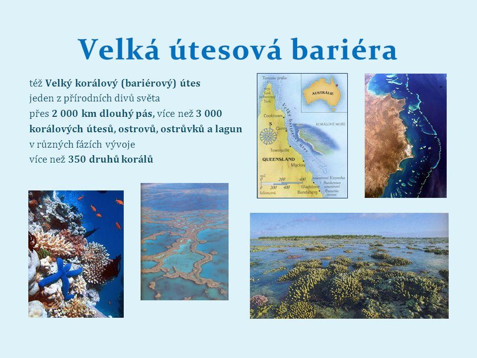 Velká útesová bariéraVelká útesová bariéra též Velký korálový (bariérový) útes jeden z přírodních divů světa přes 2 000 km dlouhý pás, více než 3 000 korálových útesů, ostrovů, ostrůvků a lagun v různých fázích vývoje více než 350 druhů korálů