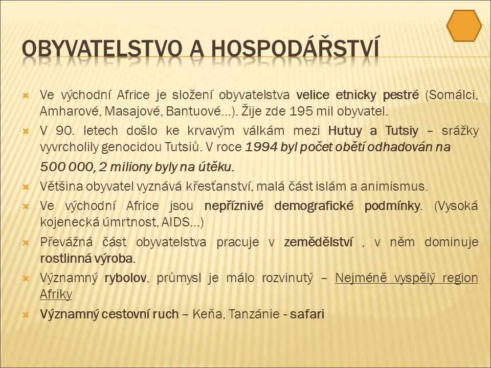  Ve východní Africe je složení obyvatelstva velice etnicky pestré (Somálci, Amharové, Masajové, Bantuové…).