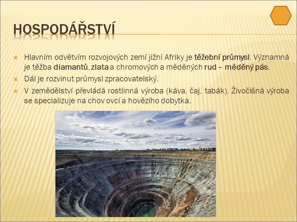  Hlavním odvětvím rozvojových zemí jižní Afriky je těžební průmysl.