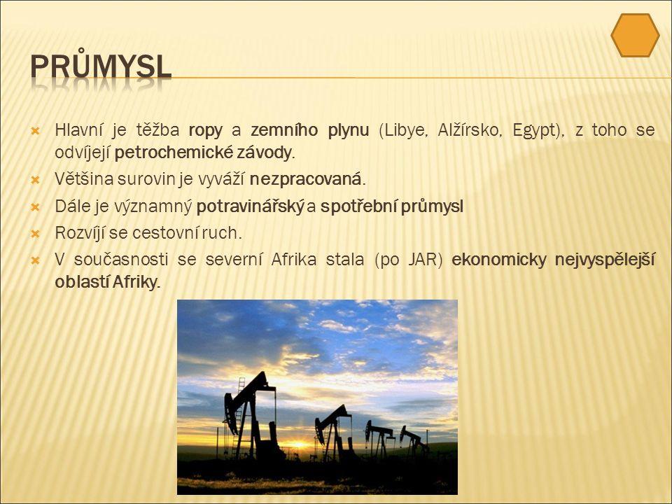  Hlavní je těžba ropy a zemního plynu (Libye, Alžírsko, Egypt), z toho se odvíjejí petrochemické závody.