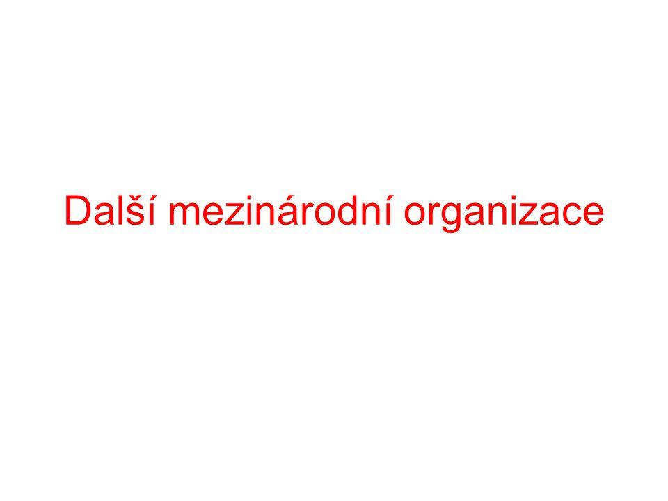 Další mezinárodní organizace