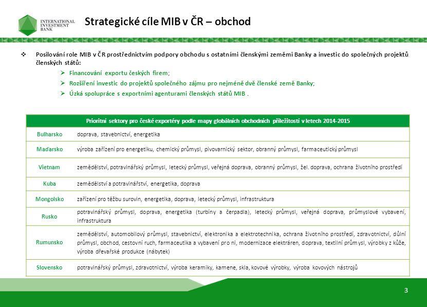 5  Růst úvěrového portfolia a vytvoření klientské základny, v souladu s posláním a strategickými cíli MIB, s vyváženým rozdělením finančních prostředků v následujících oblastech:  Střednědobé projektové financování;  Dlouhodobé a krátkodobé úvěry finančním institucím, s přihlédnutím k možnostem MIB (úrokové sazby a předpokládaná rizika).