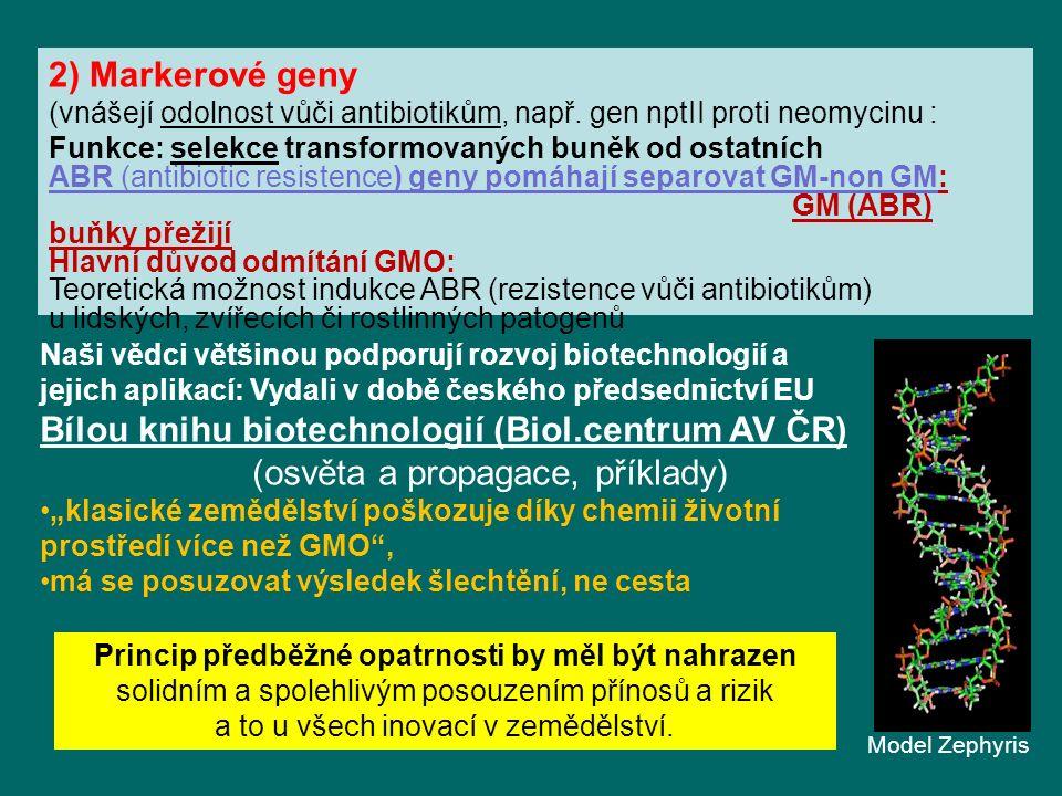 2) Markerové geny (vnášejí odolnost vůči antibiotikům, např.