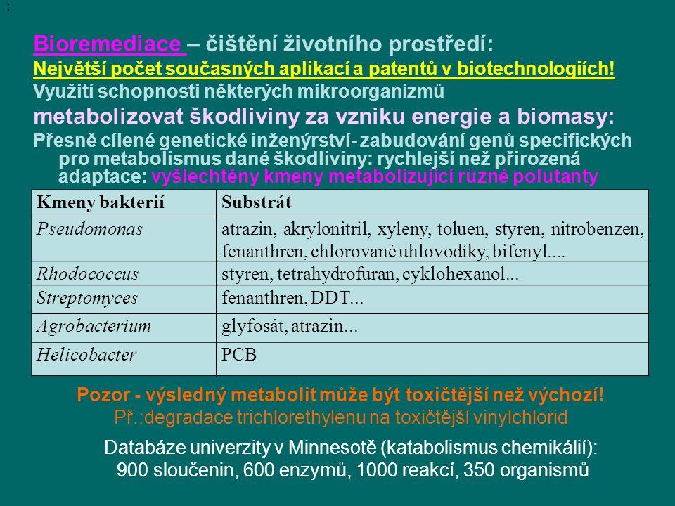 Bioremediace – čištění životního prostředí: Největší počet současných aplikací a patentů v biotechnologiích.