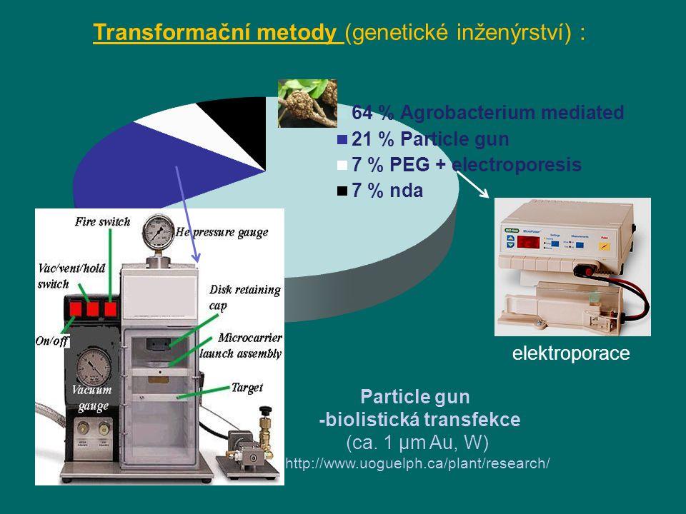 Transformační metody (genetické inženýrství) : Particle gun -biolistická transfekce (ca.