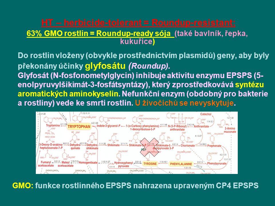 Do rostlin vloženy (obvykle prostřednictvím plasmidů) geny, aby byly překonány účinky glyfosátu ( Roundup).