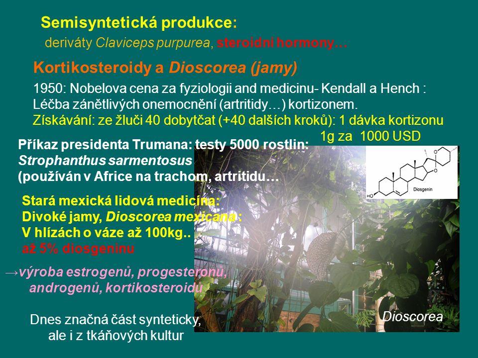 Dioscorea Kortikosteroidy a Dioscorea (jamy) 1950: Nobelova cena za fyziologii and medicinu- Kendall a Hench : Léčba zánětlivých onemocnění (artritidy…) kortizonem.