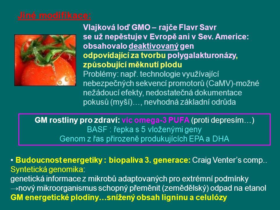 Vlajková loď GMO – rajče Flavr Savr se už nepěstuje v Evropě ani v Sev.