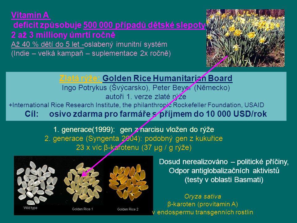 1.generace(1999): gen z narcisu vložen do rýže 2.
