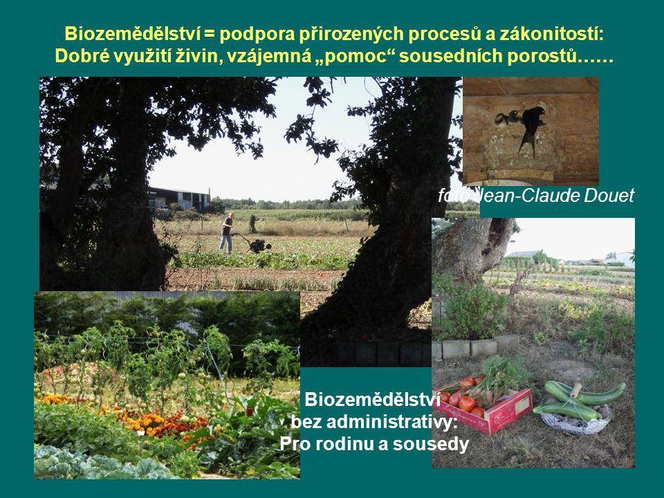"""Biozemědělství = podpora přirozených procesů a zákonitostí: Dobré využití živin, vzájemná """"pomoc sousedních porostů…… Biozemědělství bez administrativy: Pro rodinu a sousedy foto Jean-Claude Douet"""