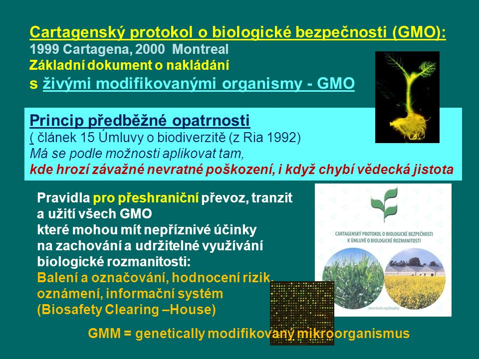 Cartagenský protokol o biologické bezpečnosti (GMO): 1999 Cartagena, 2000 Montreal Základní dokument o nakládání s živými modifikovanými organismy - GMO Pravidla pro přeshraniční převoz, tranzit a užití všech GMO které mohou mít nepříznivé účinky na zachování a udržitelné využívání biologické rozmanitosti: Balení a označování, hodnocení rizik, oznámení, informační systém (Biosafety Clearing –House) Princip předběžné opatrnosti ( článek 15 Úmluvy o biodiverzitě (z Ria 1992) Má se podle možnosti aplikovat tam, kde hrozí závažné nevratné poškození, i když chybí vědecká jistota GMM = genetically modifikovaný mikroorganismus