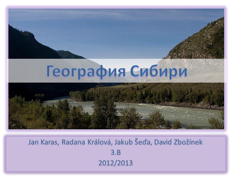 Jan Karas, Radana Králová, Jakub Šeďa, David Zbožínek 3.B 2012/2013 Jan Karas, Radana Králová, Jakub Šeďa, David Zbožínek 3.B 2012/2013