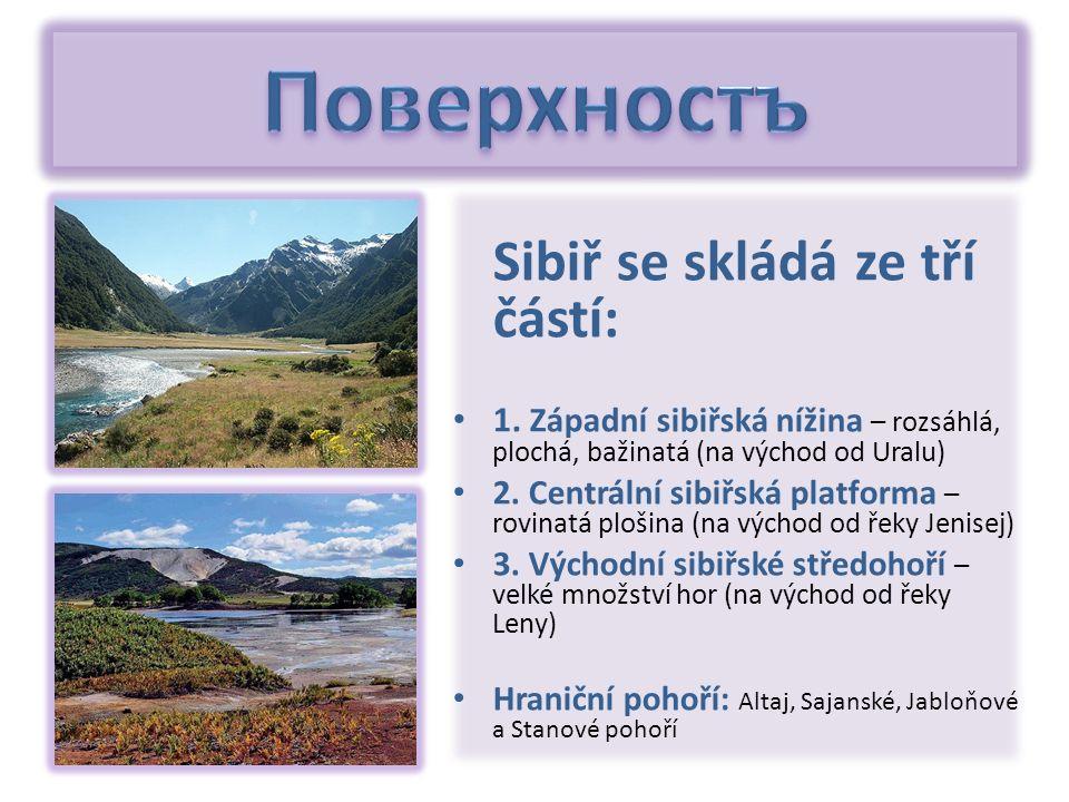 Sibiř se skládá ze tří částí: 1. Západní sibiřská nížina – rozsáhlá, plochá, bažinatá (na východ od Uralu) 2. Centrální sibiřská platforma – rovinatá