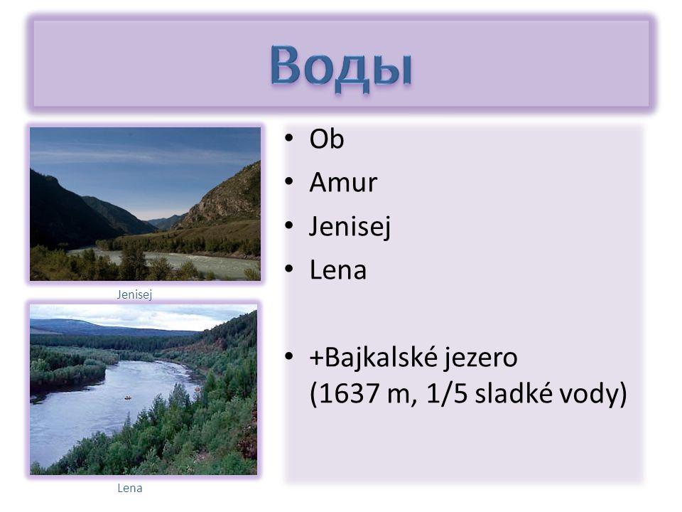 Ob Amur Jenisej Lena +Bajkalské jezero (1637 m, 1/5 sladké vody) Jenisej Lena