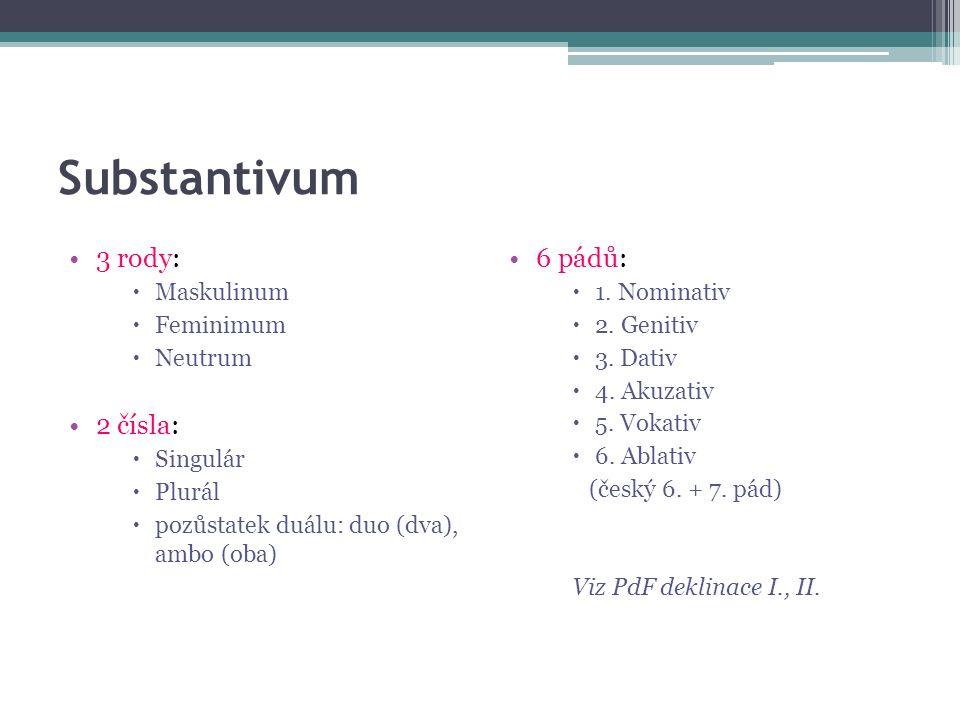 Substantivum 3 rody:  Maskulinum  Feminimum  Neutrum 2 čísla:  Singulár  Plurál  pozůstatek duálu: duo (dva), ambo (oba) 6 pádů:  1.