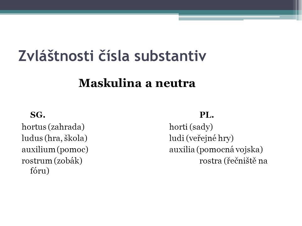 Zvláštnosti čísla substantiv Maskulina a neutra SG.