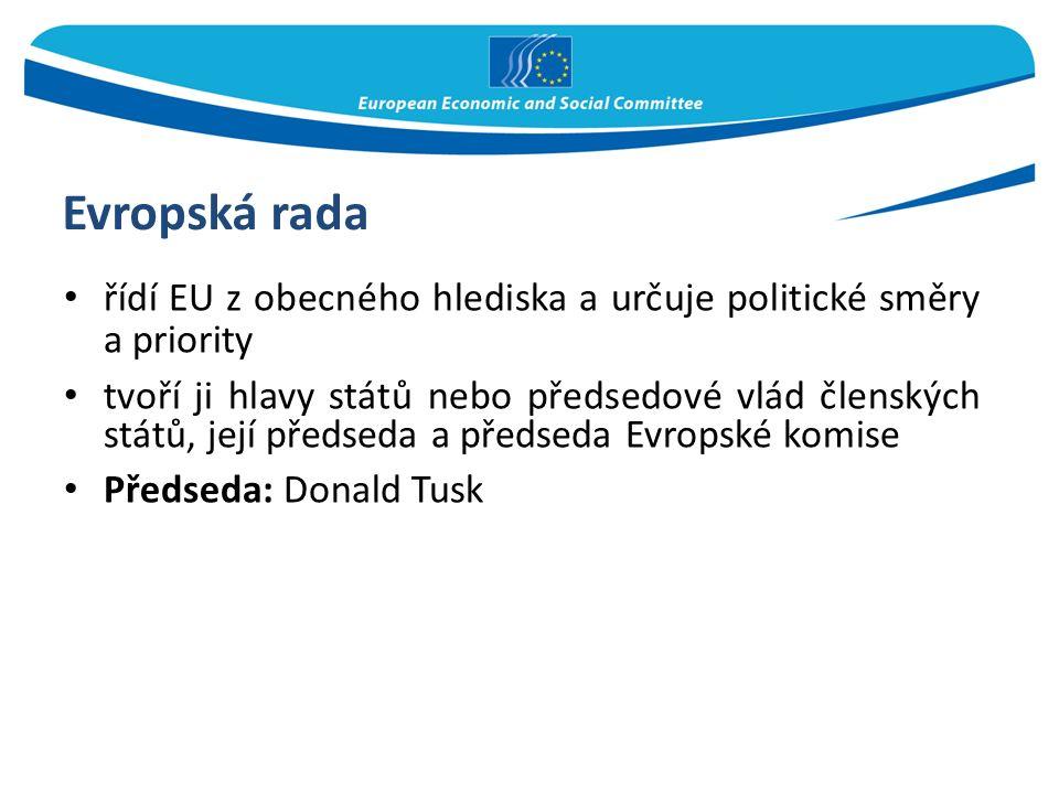Evropská rada řídí EU z obecného hlediska a určuje politické směry a priority tvoří ji hlavy států nebo předsedové vlád členských států, její předseda