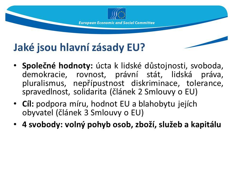 Jaké jsou hlavní zásady EU.