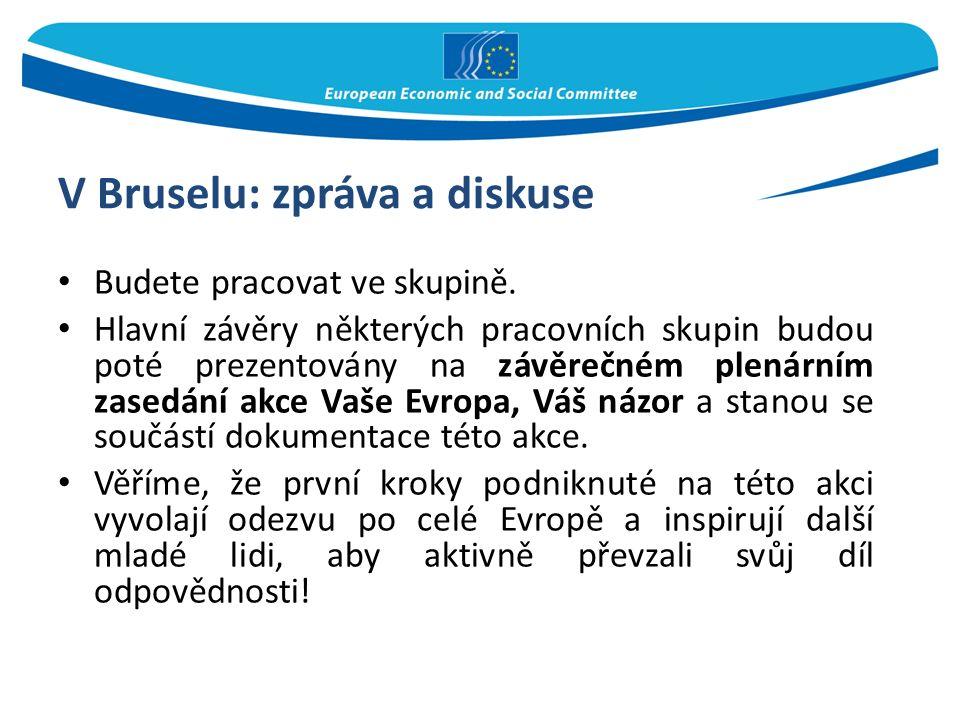 V Bruselu: zpráva a diskuse Budete pracovat ve skupině. Hlavní závěry některých pracovních skupin budou poté prezentovány na závěrečném plenárním zase