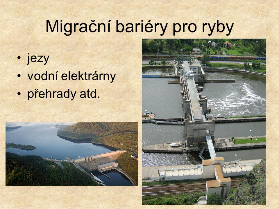 Migrační bariéry pro ryby jezy vodní elektrárny přehrady atd.