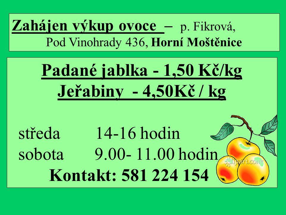 Zahájen výkup ovoce – p.