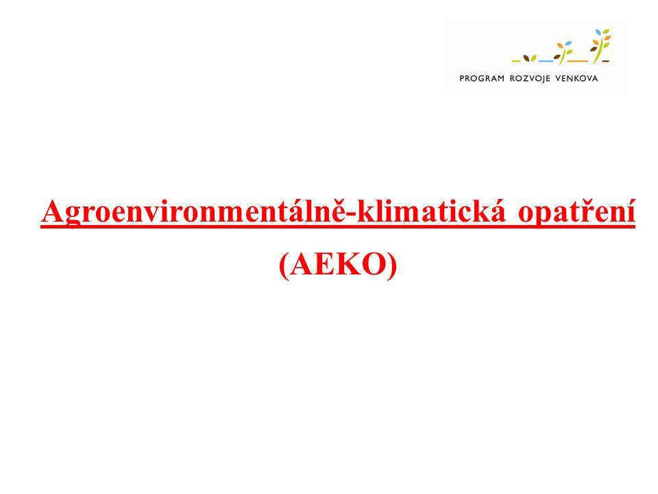 AEKO Zatravňování drah soustředěného odtoku -Vstup min.