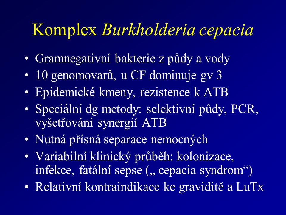 """Komplex Burkholderia cepacia Gramnegativní bakterie z půdy a vody 10 genomovarů, u CF dominuje gv 3 Epidemické kmeny, rezistence k ATB Speciální dg metody: selektivní půdy, PCR, vyšetřování synergií ATB Nutná přísná separace nemocných Variabilní klinický průběh: kolonizace, infekce, fatální sepse ("""" cepacia syndrom ) Relativní kontraindikace ke graviditě a LuTx"""