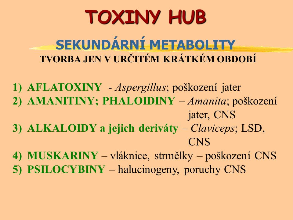 TOXINY HUB TOXINY HUB SEKUNDÁRNÍ METABOLITY TVORBA JEN V URČITÉM KRÁTKÉM OBDOBÍ 1)AFLATOXINY - Aspergillus; poškození jater 2)AMANITINY; PHALOIDINY – Amanita; poškození jater, CNS 3)ALKALOIDY a jejich deriváty – Claviceps; LSD, CNS 4)MUSKARINY – vláknice, strmělky – poškození CNS 5)PSILOCYBINY – halucinogeny, poruchy CNS