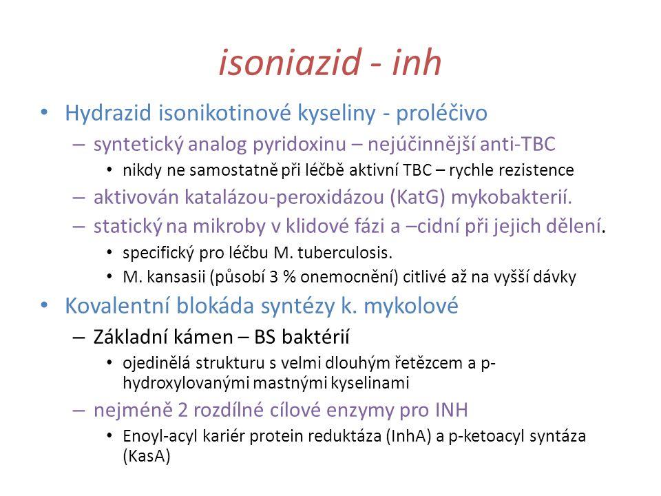 isoniazid - inh Hydrazid isonikotinové kyseliny - proléčivo – syntetický analog pyridoxinu – nejúčinnější anti-TBC nikdy ne samostatně při léčbě aktiv