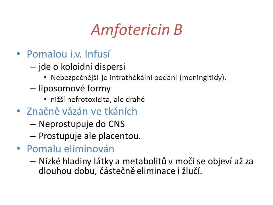 Amfotericin B Pomalou i.v. Infusí – jde o koloidní dispersi Nebezpečnější je intrathékální podání (meningitidy). – liposomové formy nižší nefrotoxicit