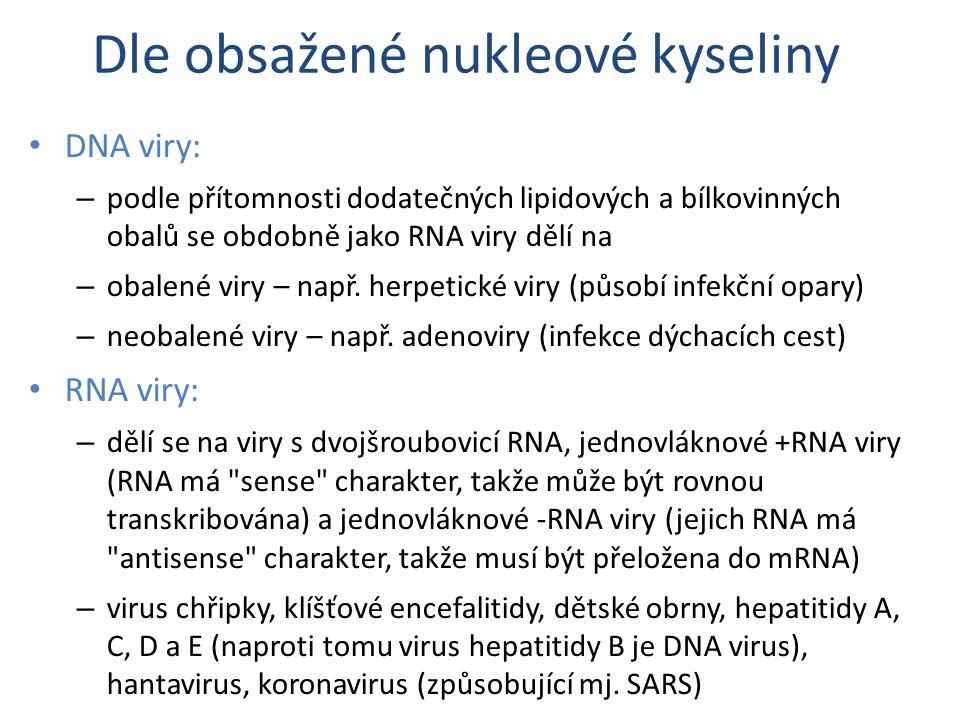 Dle obsažené nukleové kyseliny DNA viry: – podle přítomnosti dodatečných lipidových a bílkovinných obalů se obdobně jako RNA viry dělí na – obalené vi