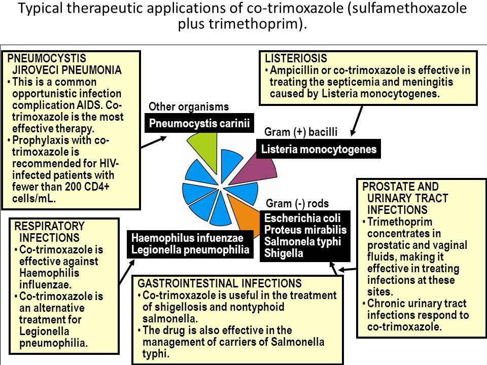 Typical therapeutic applications of co-trimoxazole (sulfamethoxazole plus trimethoprim). (according to Lippincott´s Pharmacology, 2006) PNEUMOCYSTIS J