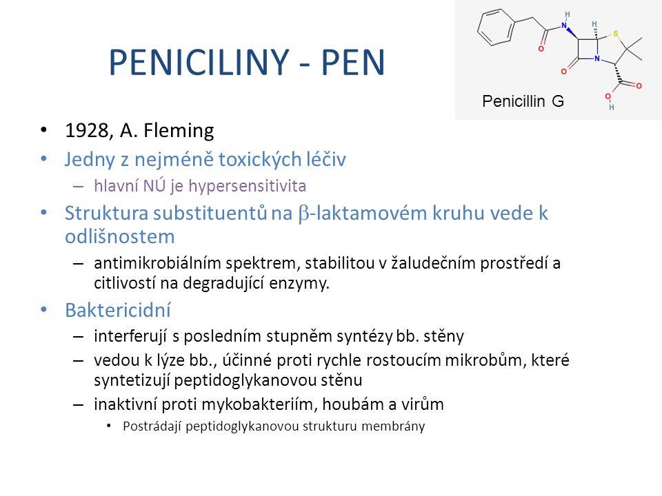 PENICILINY - PEN 1928, A. Fleming Jedny z nejméně toxických léčiv – hlavní NÚ je hypersensitivita Struktura substituentů na  -laktamovém kruhu vede k